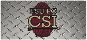 FSU CSI Car Tag (Thumbprint)